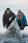 John Krasinksi and Drew Barrymore in Big Miracle