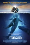 Big Miracle - a film about grey whales